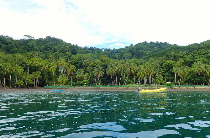 A Day in Golfo Dulce-Costa Rica