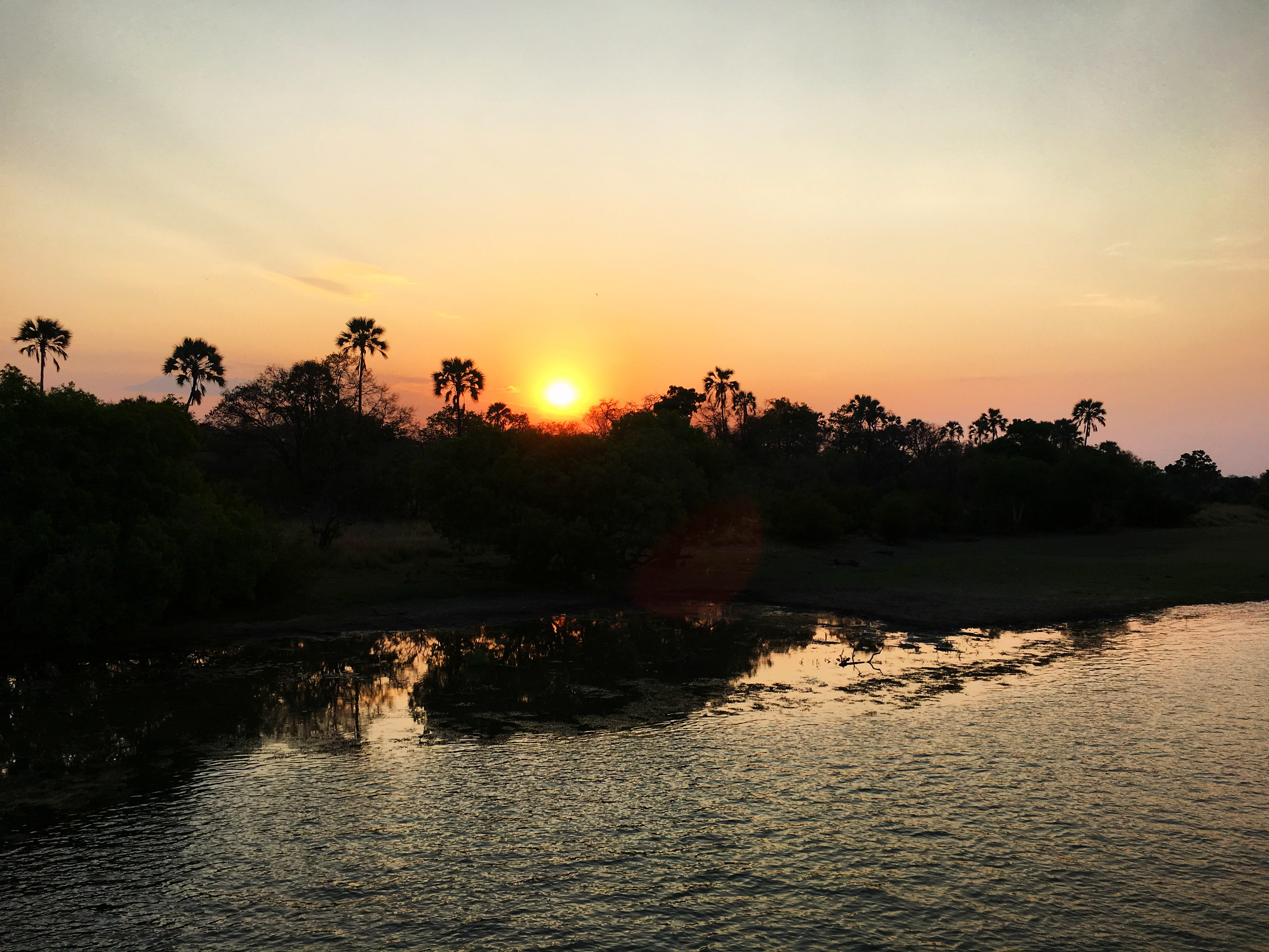 Zambezi River Sunset and Dinner Cruise-Zimbabwe