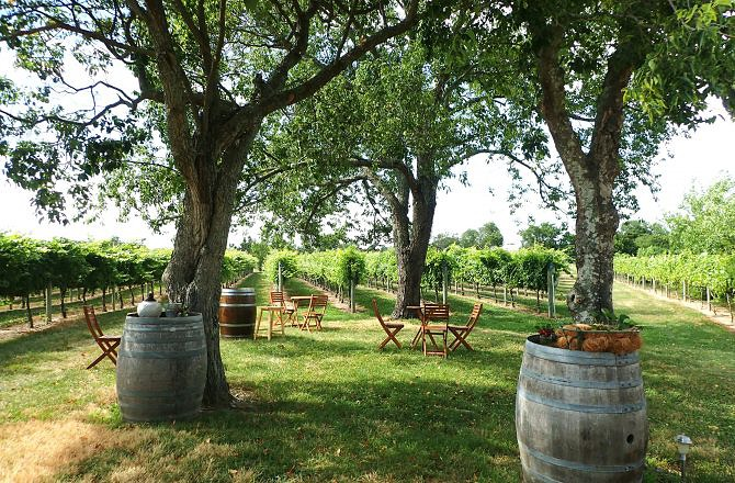 New Jersey Wine Tour-Round Two