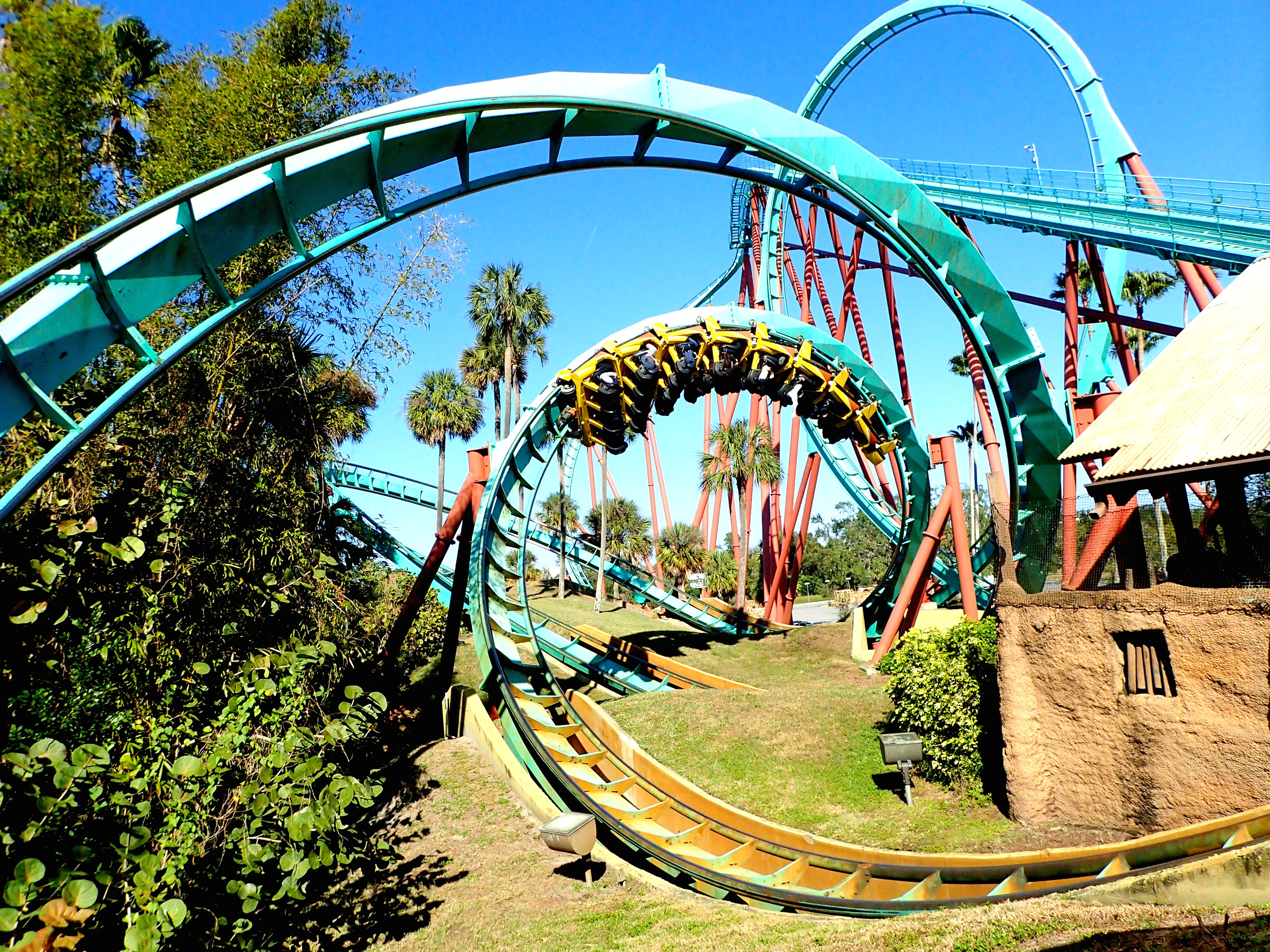 Busch Gardens Tampa For 5 Year Old